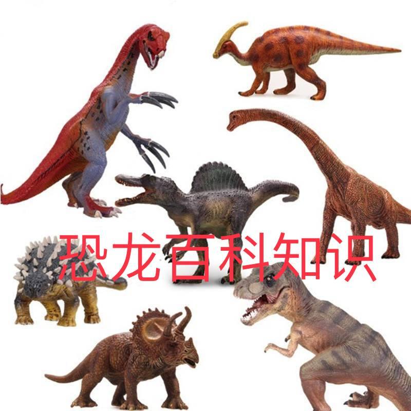 恐龙百科知识