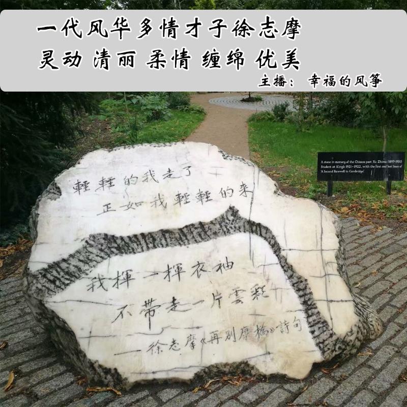 徐志摩诗歌集经典现代诗爱情诗