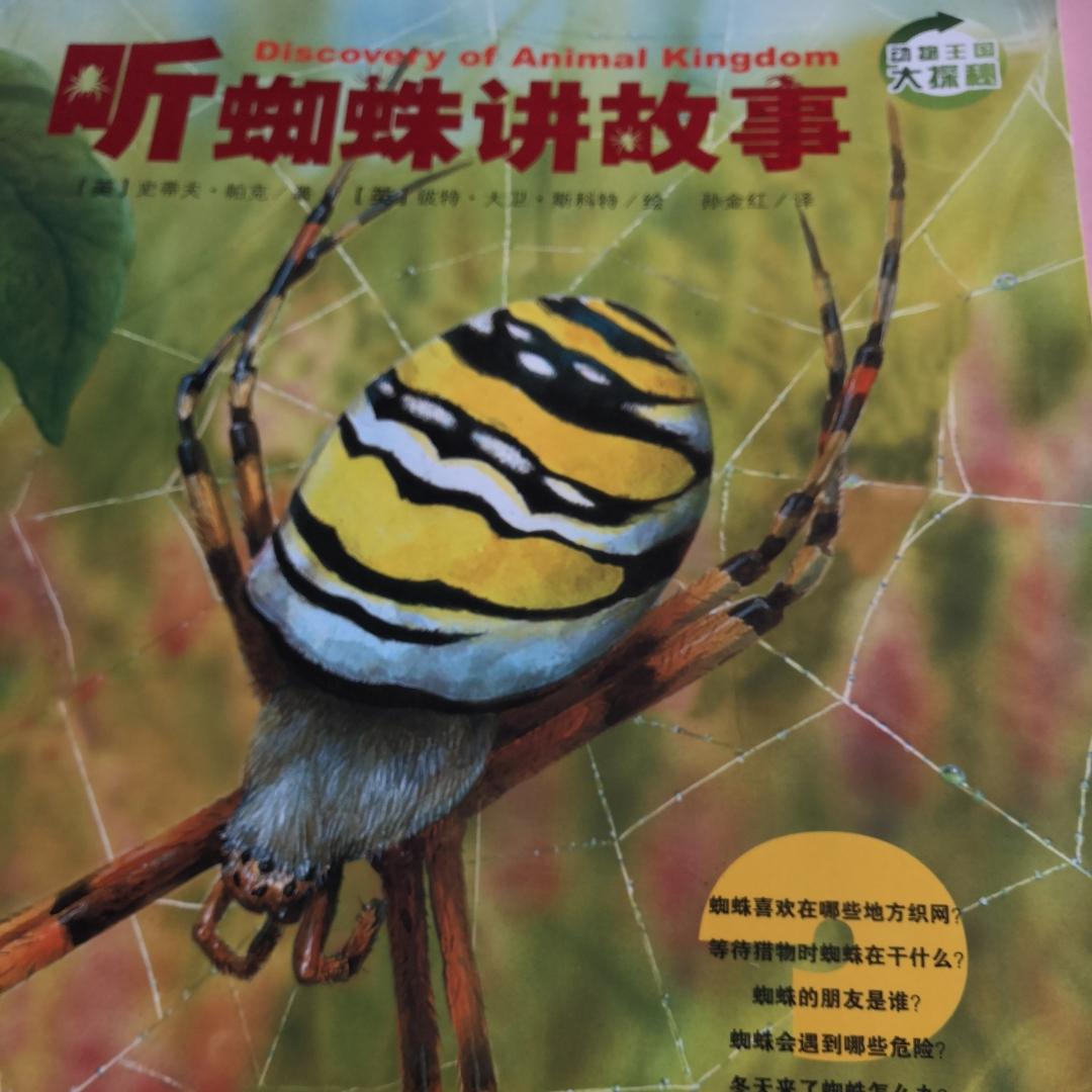 听蜘蛛讲故事