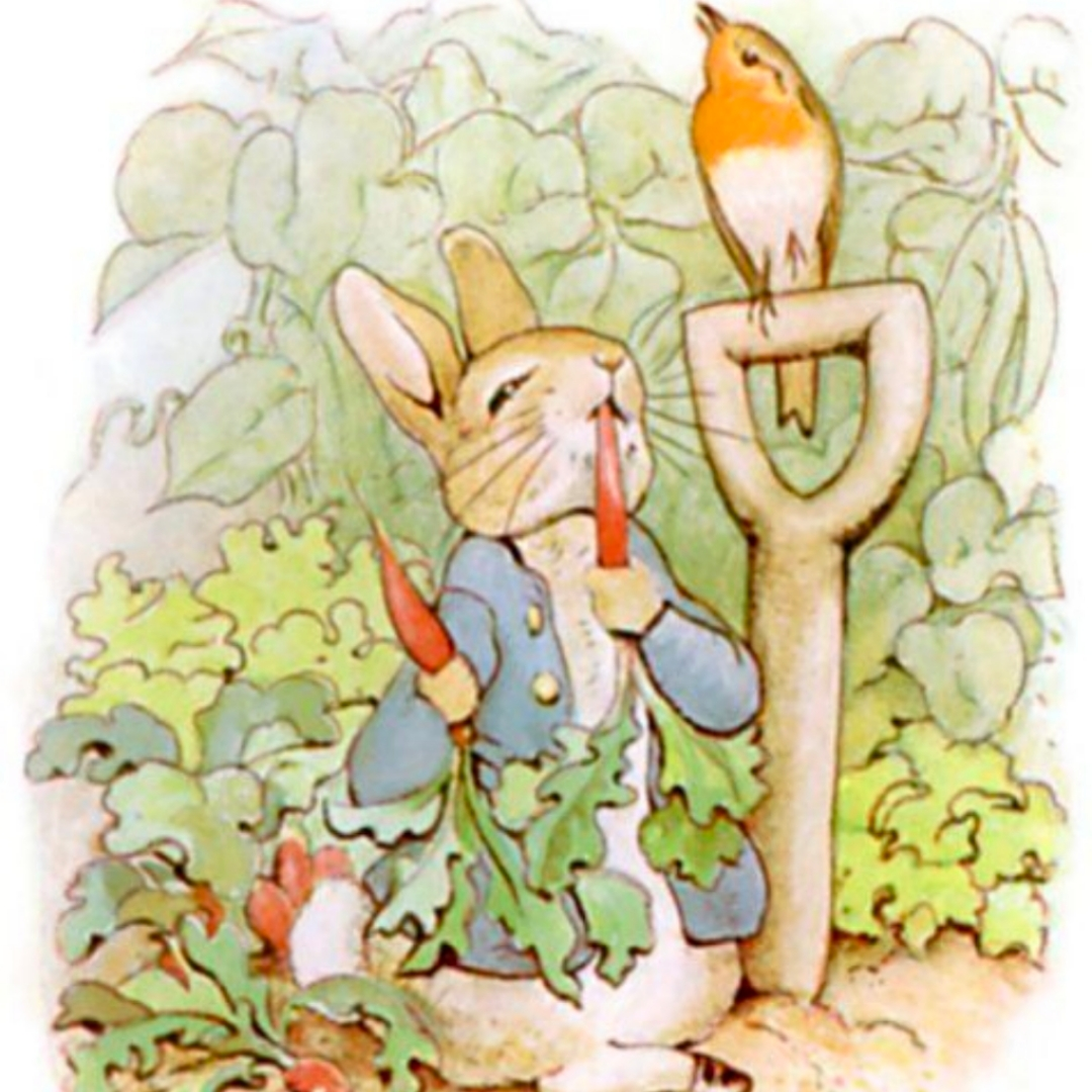 童话彼得兔
